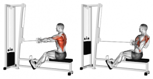 lat pulldown & cable row